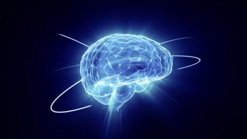 مغز و حقایق روانشناسی اش!